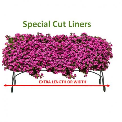 """special-cut-liners2-500x500 Amateurs Answer """"Special Liner"""""""